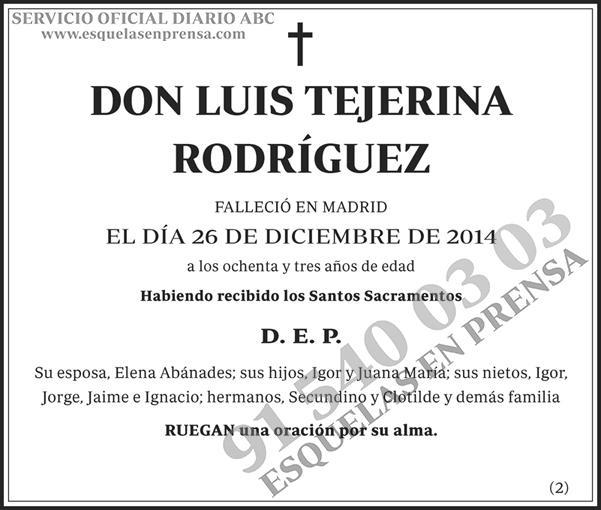 Luis Tejerina Rodríguez
